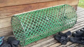 Cara menangkap udang dengan bubu