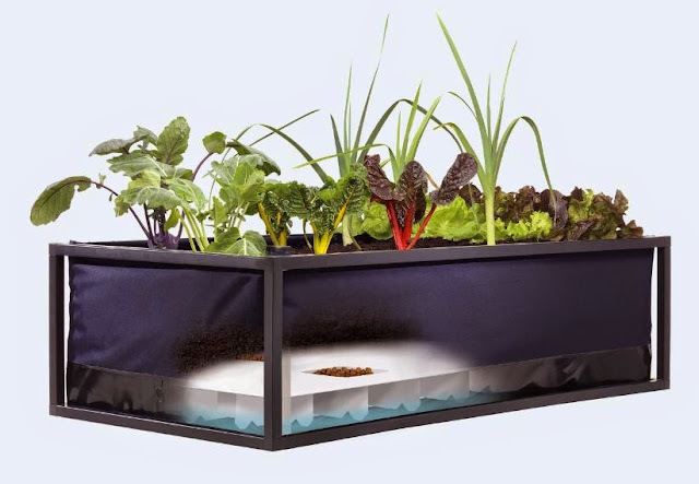 Smart and Innovative Gardening Gadgets (15) 5