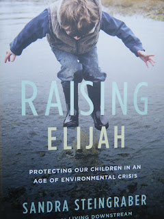 book cover Raising Elijah by Steingraber