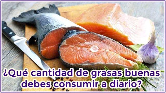 Cantidades diarias de grasas que debemos consumir por medio de alimentos