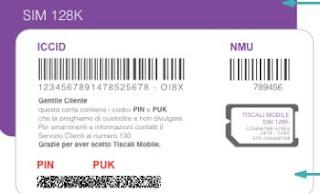 usare PIN e PUK della SIM