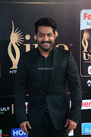 Jr. NTR at IIFA Utsavam Awards 2017 (11).JPG