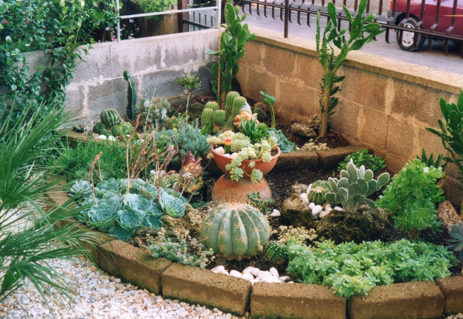 I giardini di carlo e letizia giardino di piante grasse for Piante da aiuola