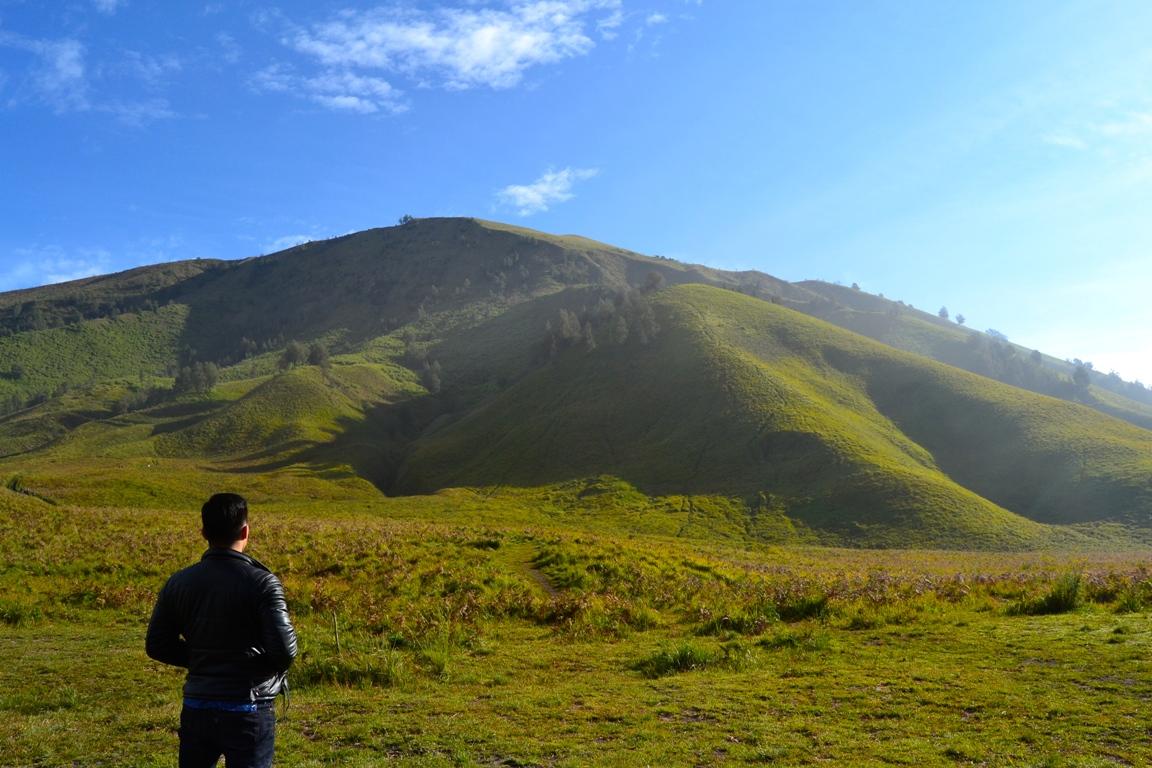 Bukit Teletubbies di Bromo