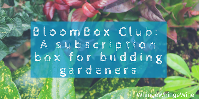 BloomBox Club: A new subscription box for budding gardeners + WIN!