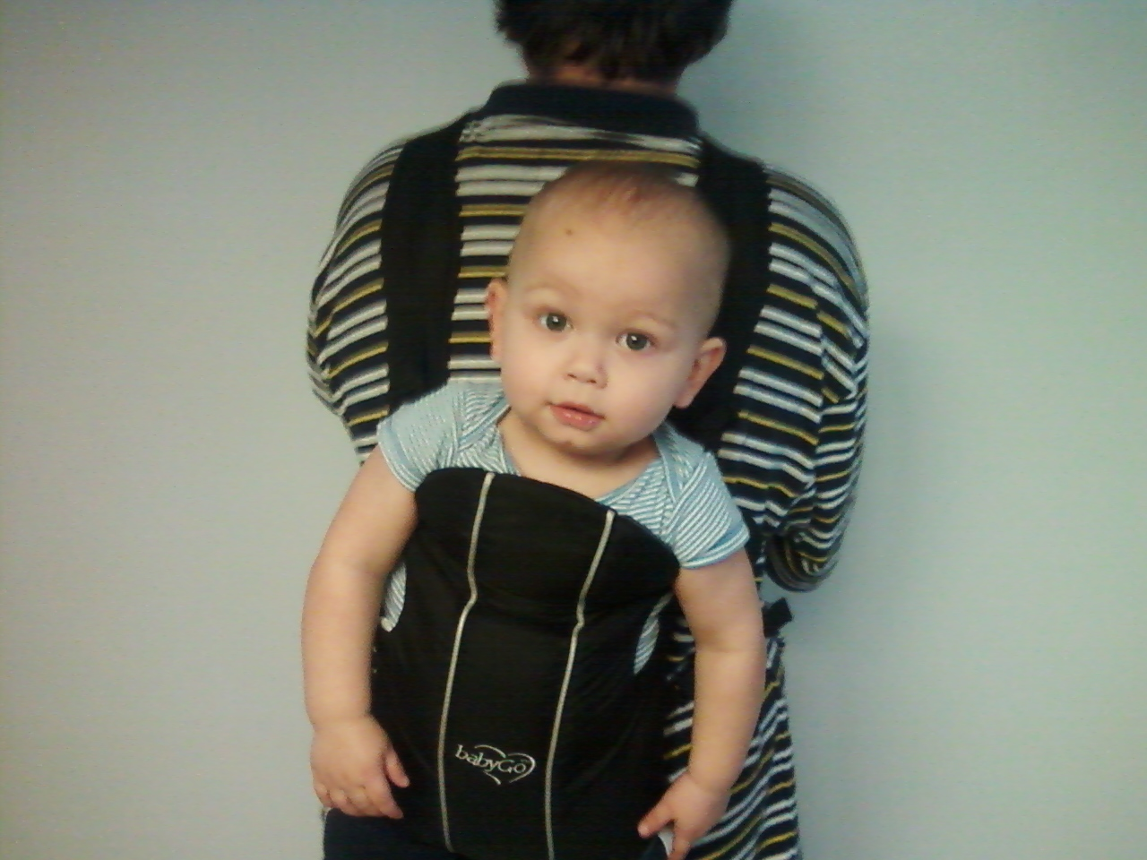 14 month old fits in baby carrier, wordless wednesday picture of 14 month old in baby carrier
