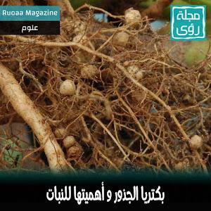 بكتريا الجذور صديقة النبات  - ترجمة إبراهيم العلو
