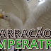POR DENTRO DO DESFILE - BARRACÃO DA IMPERATRIZ PARA O CARNAVAL 2017