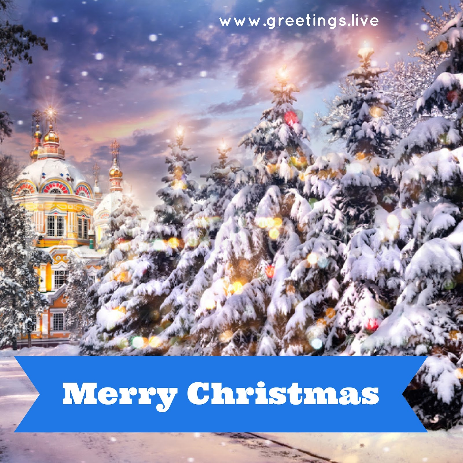 Greetingsve hd images love smile birthday wishes free download ice covered christmas trees christmas greetings in russian theme kristyandbryce Image collections