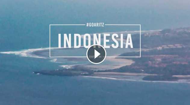 GOARITZ - INDONESIA