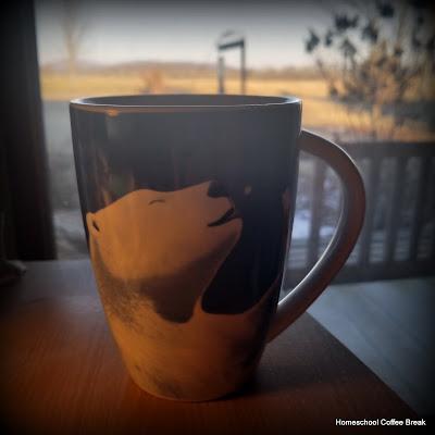 Homeschool Highlights - First Semester Wrapped Up on Homeschool Coffee Break @ kympossibleblog.blogspot.com
