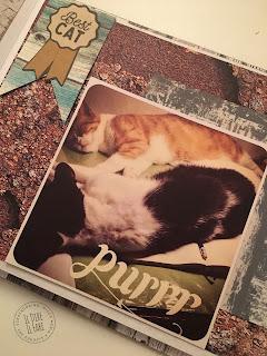 album fai da te per i nostri amici a quattro zampe