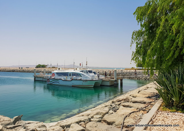 Ferry to Sir Bani Yas Island