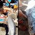 Pescadores capturam peixe misterioso repleto de tatuagens luminosas - Seria uma mensagem para humanidade?