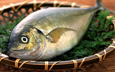 Fish Foods not to eat for wound healing