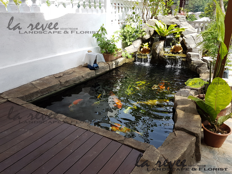 Professional koi pond and landscape contractor specialist for Koi pond specialist