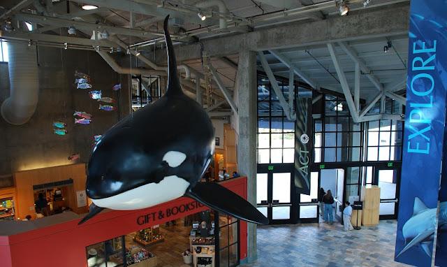 Informações sobre o Monterey Bay Aquarium
