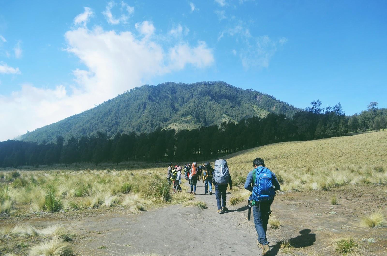 Tahap Demi Tahap Pendakian Gunung Semeru Hingga Puncak Mahameru 3676 Mdpl Zuckici Com