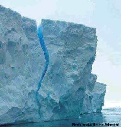 perivallonesia Galeri Gambar Kutub Utara dan Selatan
