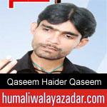 https://www.humaliwalyazadar.com/2018/09/qaseem-haider-qaseem-nohay-2019.html