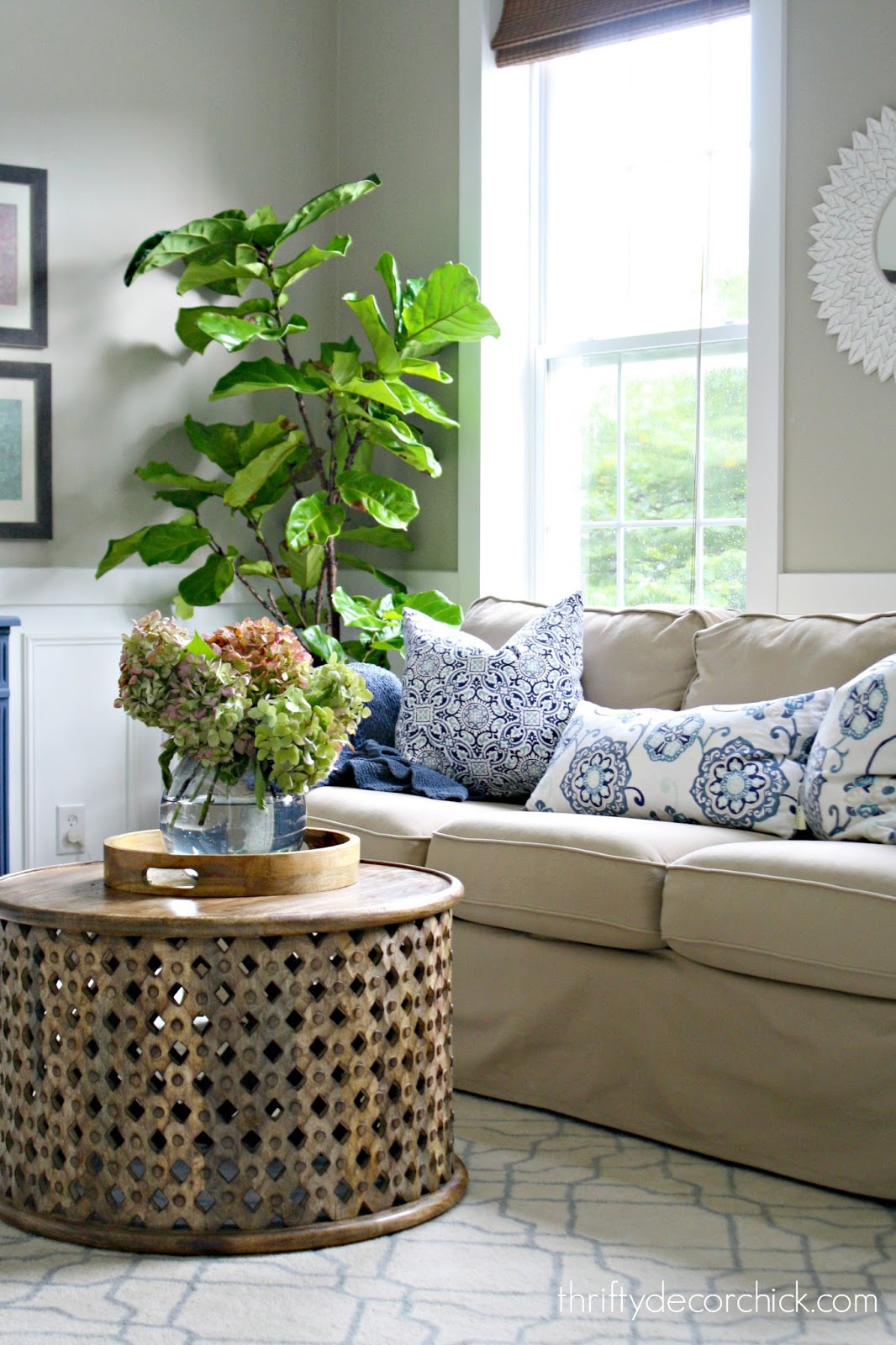 How to not kill your fiddle leaf plant from thrifty decor for Thrifty decor