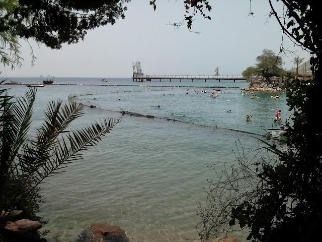 חוף ים באילת