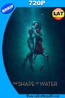 La Forma del Agua (2017) Latino HD 720p - 2017