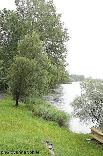 Piccolo Lago di Verbania