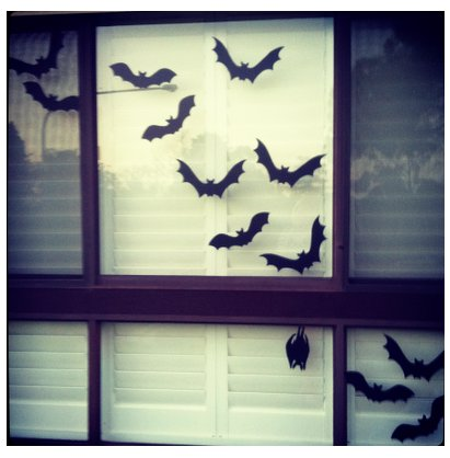 Window Bats From Giggleberry Creations