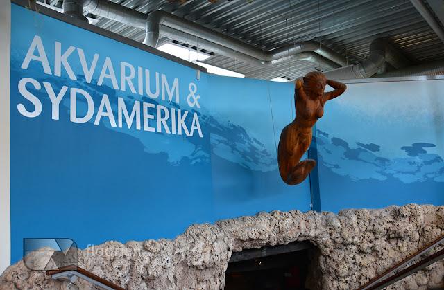 Zwiedzanie Randers Regnskov Tropical Zoo w Danii