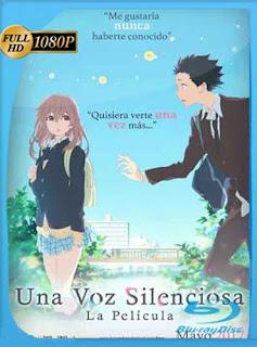 Una voz silenciosa (2016) HD [1080p] Latino [GoogleDrive] SilvestreHD