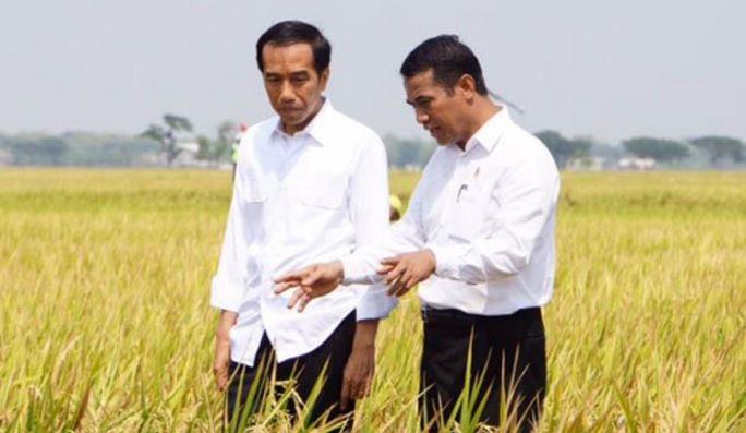 Mendorong Investor Dari Tiongkok Jepang Masuk Ke Indonesia