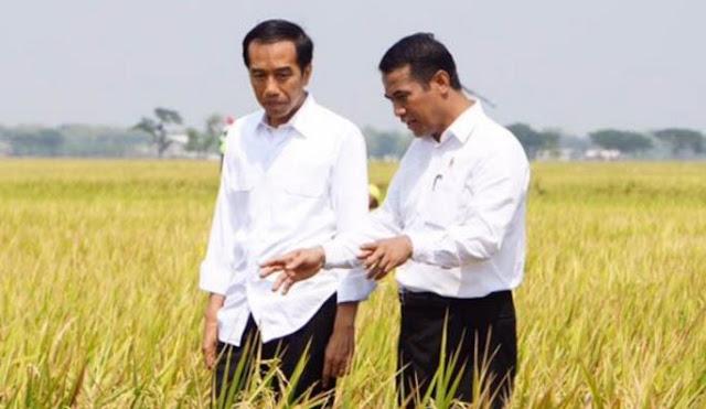 kondisi pertanian Indonesia