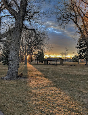 The sun rises through the trees of a park in Cheyenne Wyoming