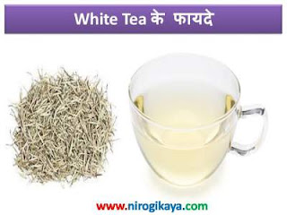 white-tea-health-benefits-in-hindi