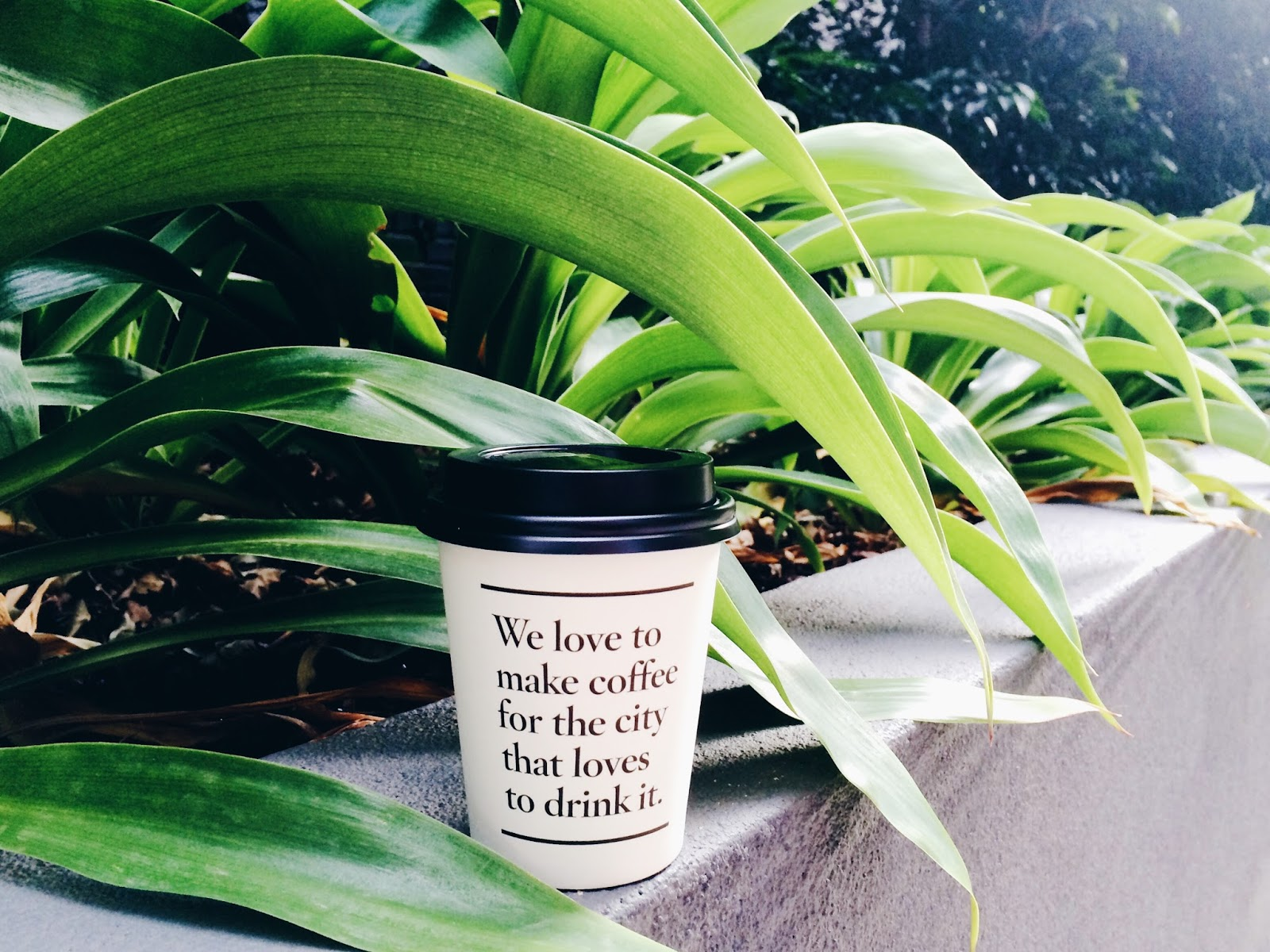 6 x coffee & juice in Melbourne