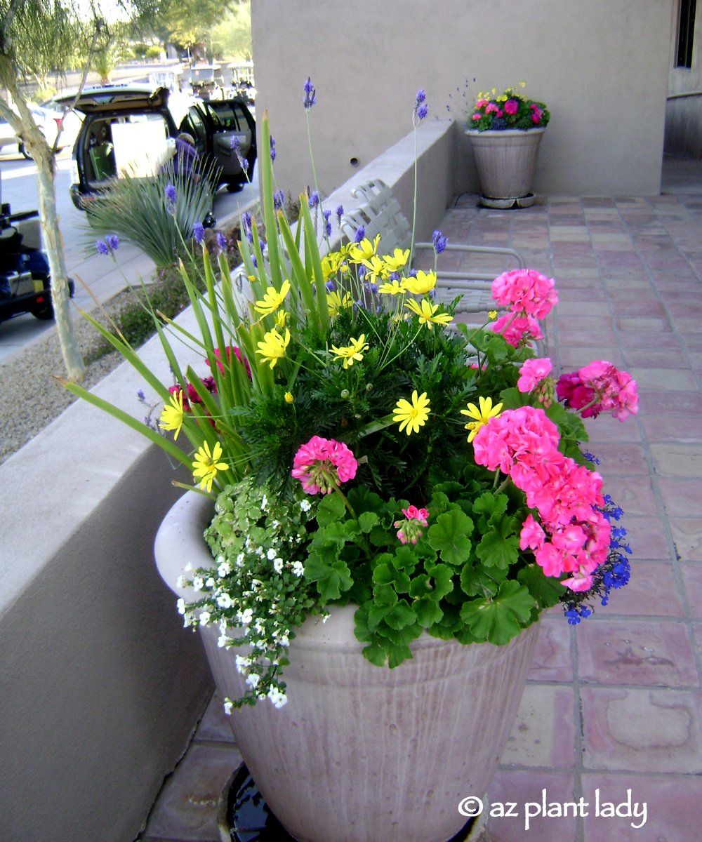 "Mother S Day Container Garden Ideas: Container Gardening Book Review & Giveaway: ""Getting"