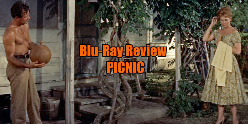 picnic film review