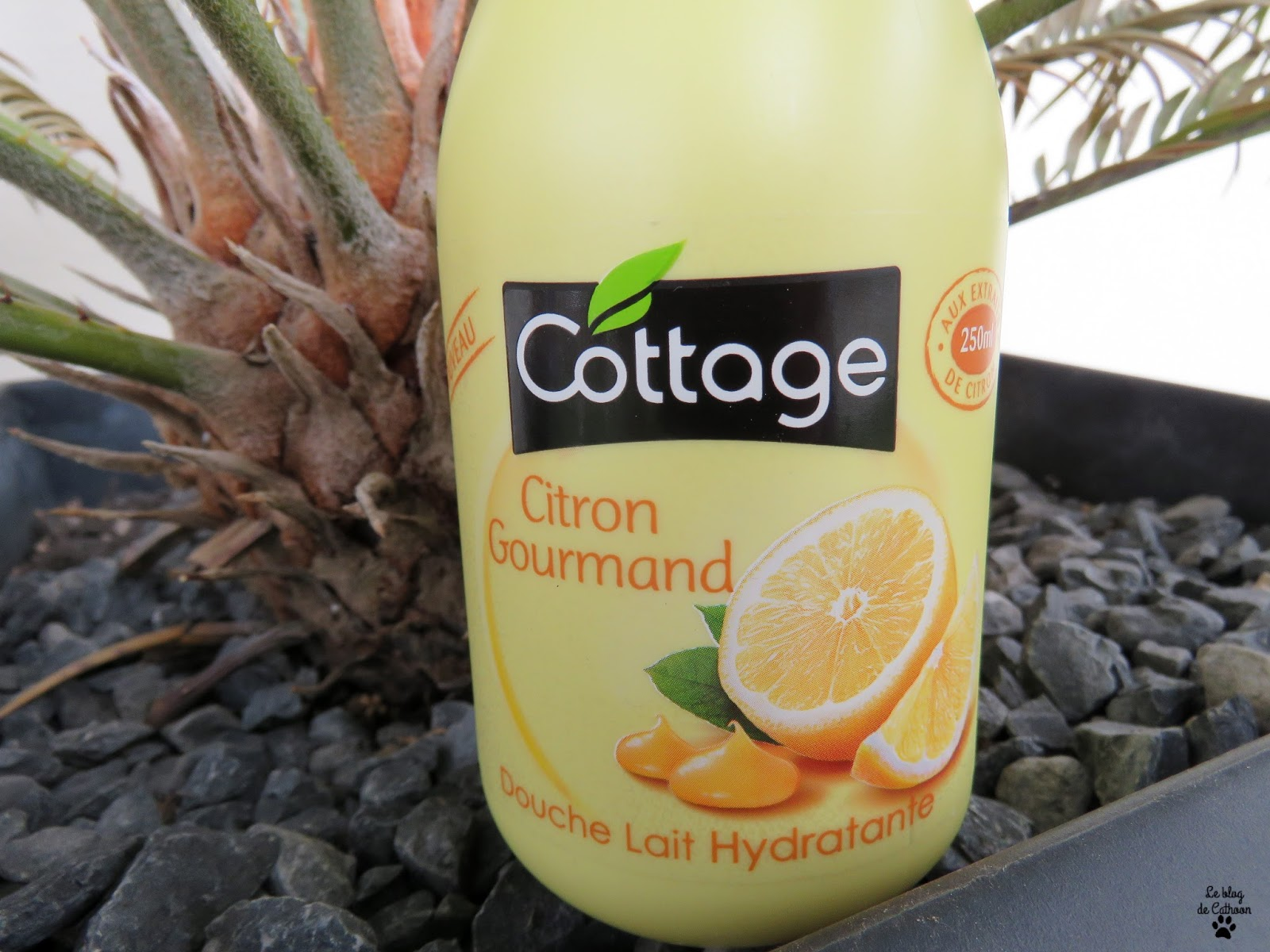 Citron Gourmand - Douche Lait Hydratant - Cottage