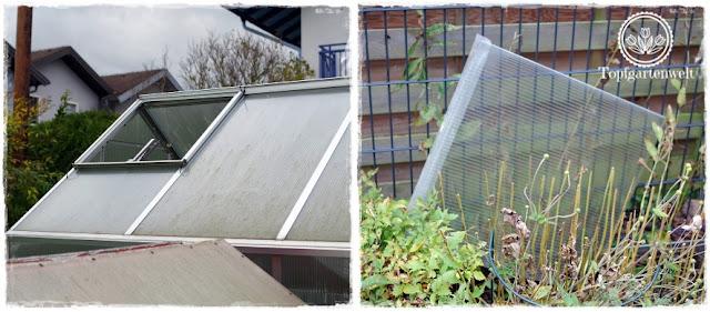 Gartenblog Topfgartenwelt Sturmtief Herwart: Sturmtief Herwart riss die Doppelstegplatte aus dem Fensterrahmen des Gewächshauses