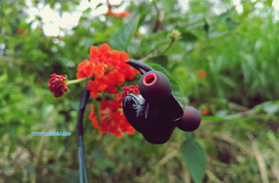 Review in-ear Earphone Knowledge Zenith KZ-ZS3