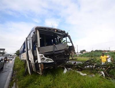 Colisão de ônibus com cavalo e árvore deixa 20 operários feridos em Igarassu