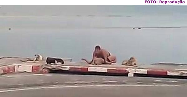 gajas na praia videos e sexo