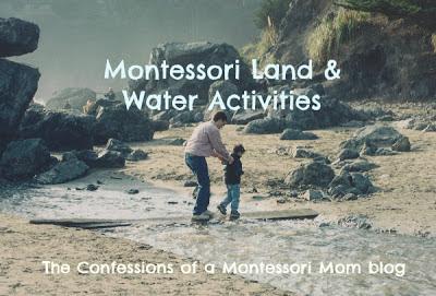 Montessori Land and Water Activities