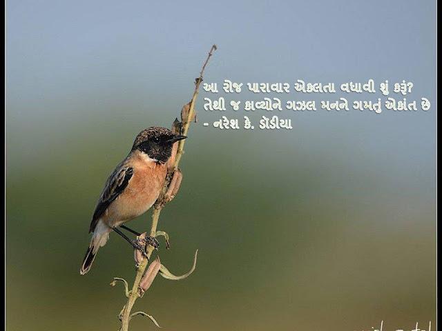 आ रोज पारावार एकलता वधावी शुं करूं? Gujarati Sher By Naresh K. Dodia