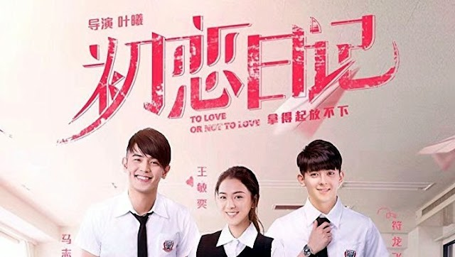 Review Movie Hong Kong : To Love or Not To Love (2017)