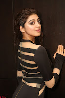 Pranitha Subhash in a skin tight backless brown gown at 64th Jio Filmfare Awards South ~  Exclusive 122.JPG