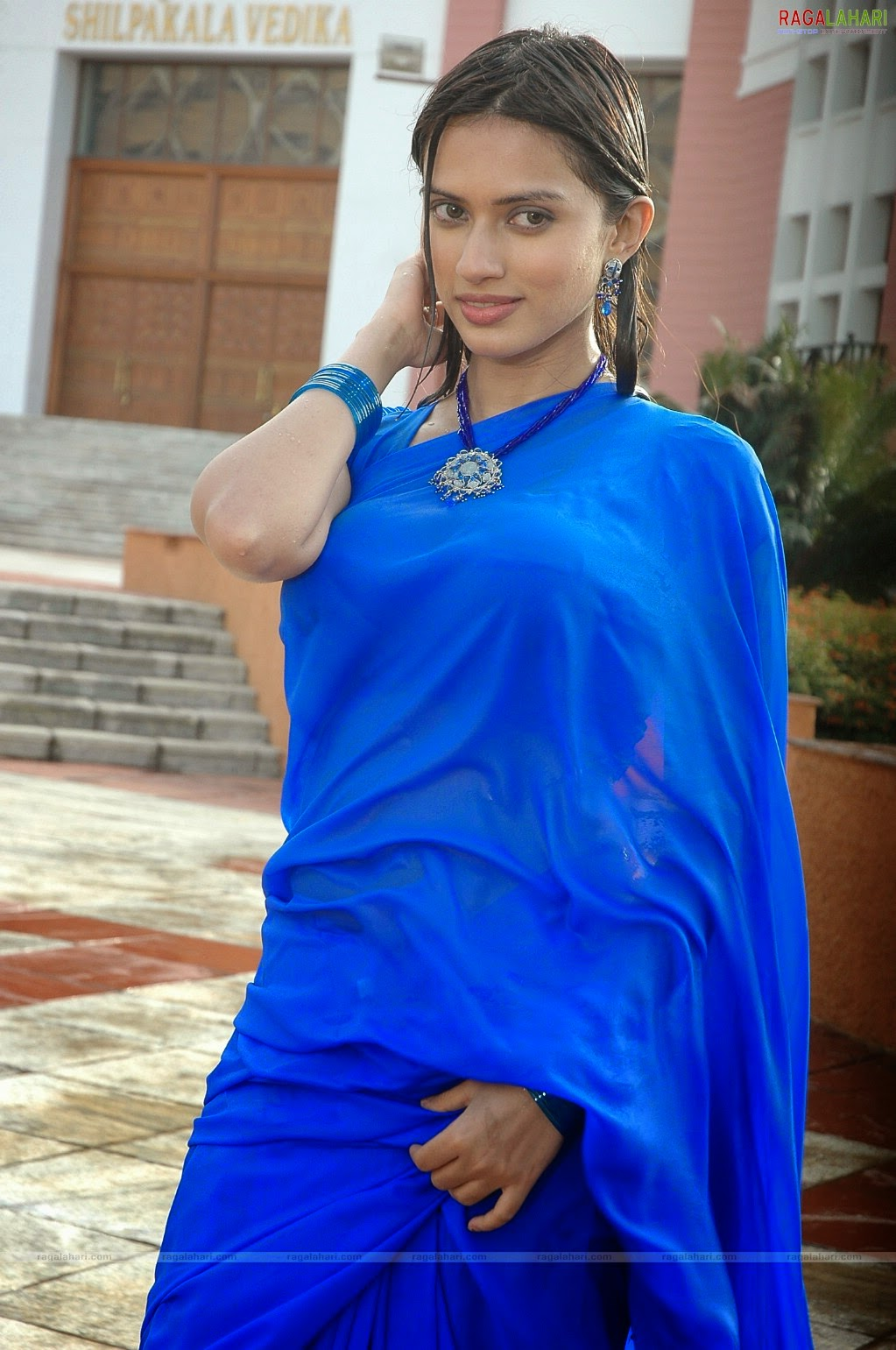 Indian Hot Actress In Wet Blue Saree Hot Photos -8737