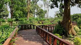 The park is not the highest point in Equatorial Guinea which is 3,008 m