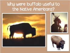 http://www.teacherspayteachers.com/Product/How-Native-Americans-used-the-different-Parts-of-Buffalo-Power-Point-166087